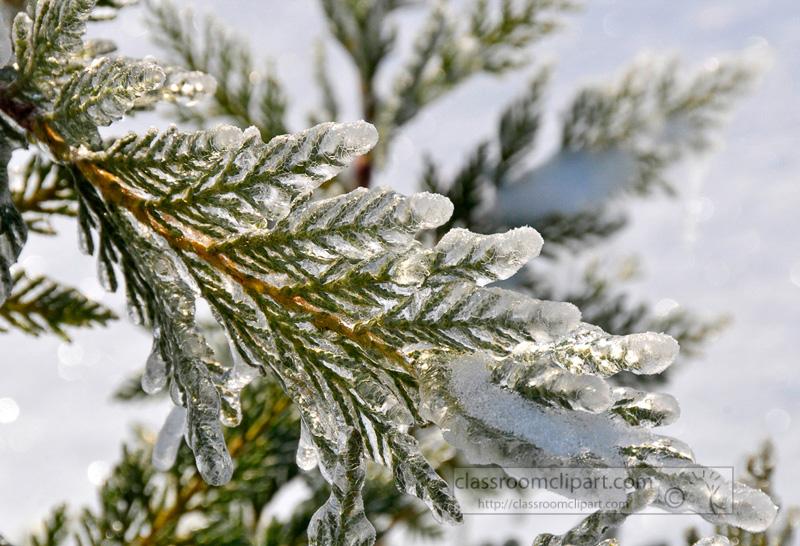 winter_2110_39.jpg
